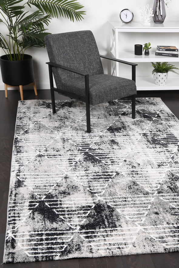 Paisley Transitional Geometric Grey Rug