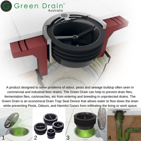 """Green Drain 2/"""" Waterless Trap Seal for sale online"""