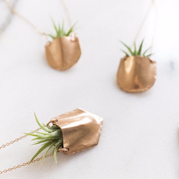 Airplant Necklace