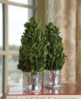 Boxwood Cone in Mercury Glass