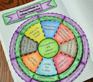 Photosynthesis vs Cellular Respiration Wheel Foldable