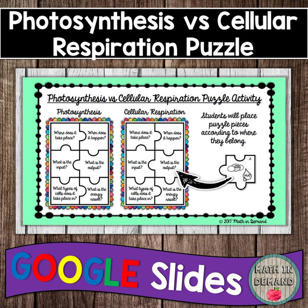 Photosynthesis vs Cellular Respiration Puzzle Activity in ...