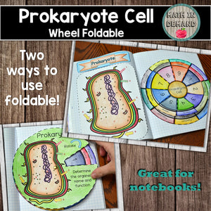 Prokaryote Cell Wheel Foldable