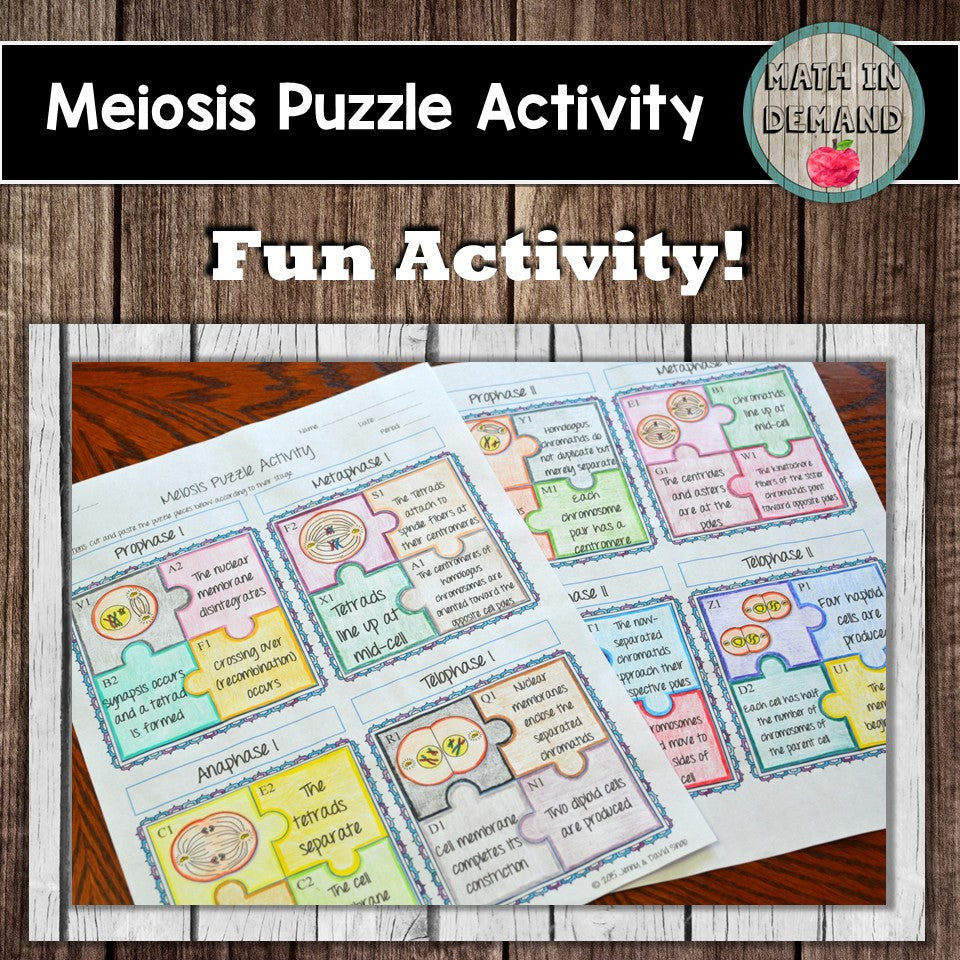 Meiosis Puzzle Activity