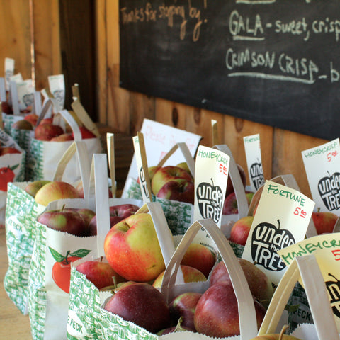 The farmstand is open and full of apples!