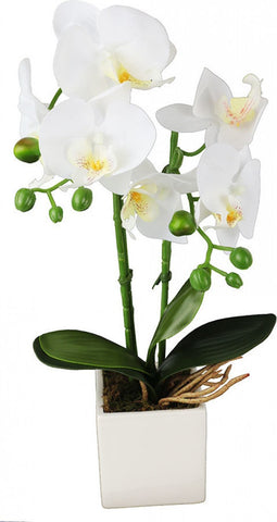 Faux Orchid White Small