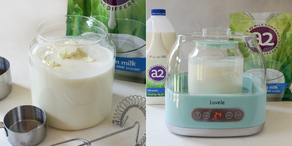 A2 milk yogurt recipe