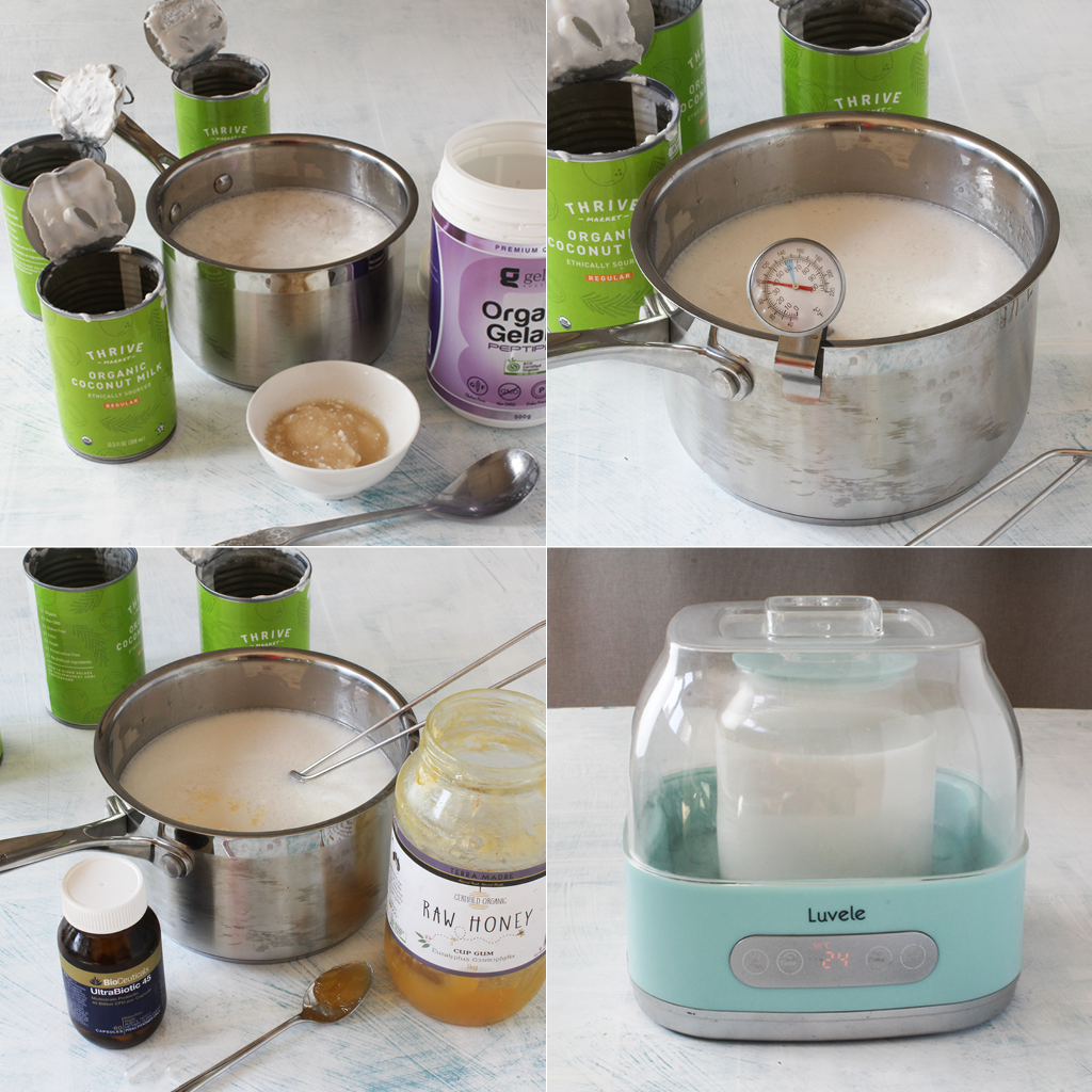 SCD coconut yogurt step by step