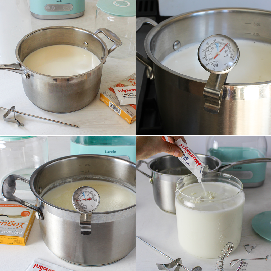 SCD yogurt step by step