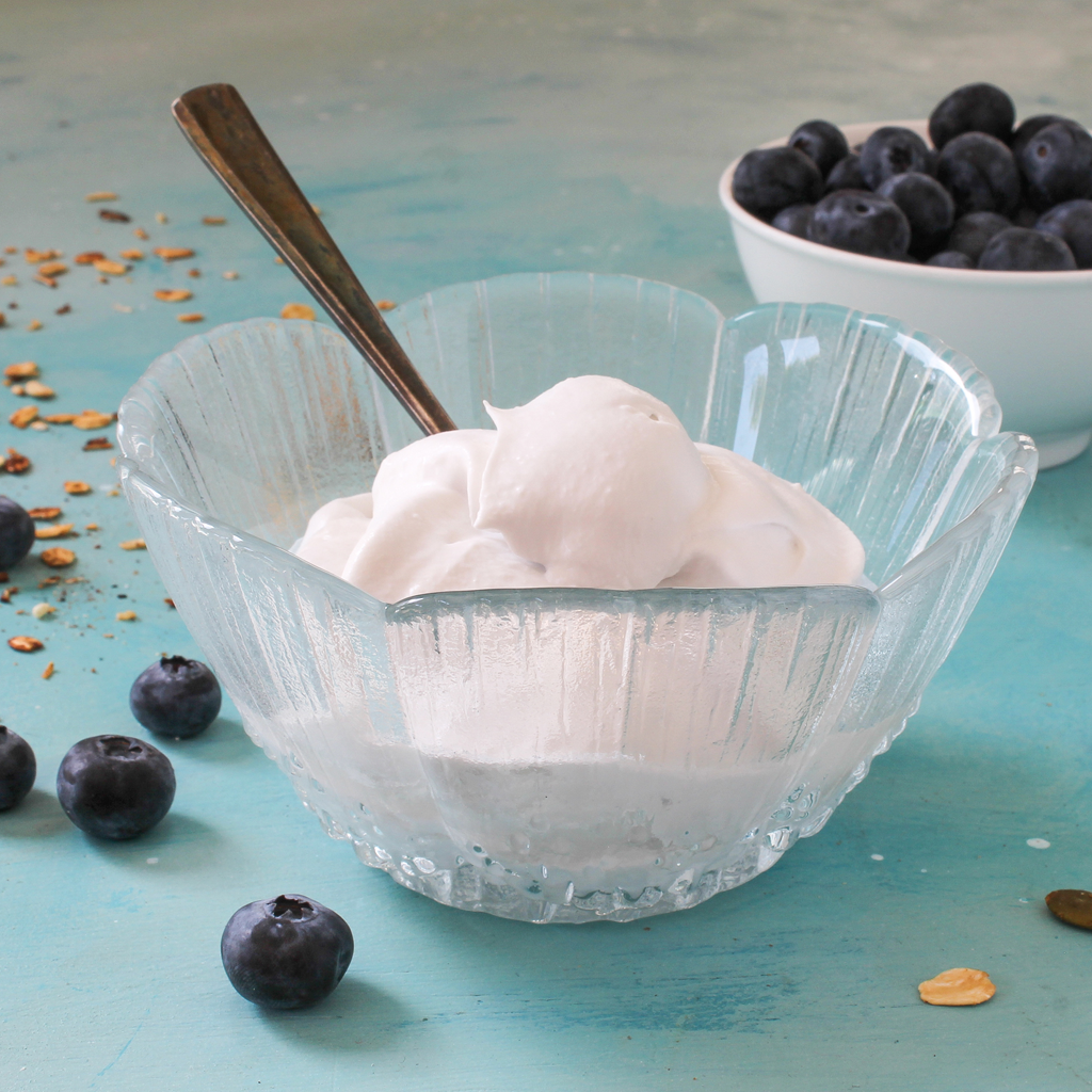 Keto-friendly coconut yogurt