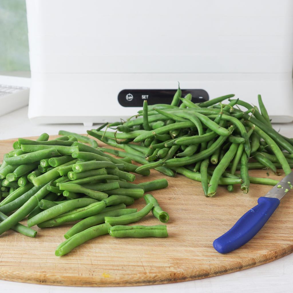 how to dehydrate fresh beans