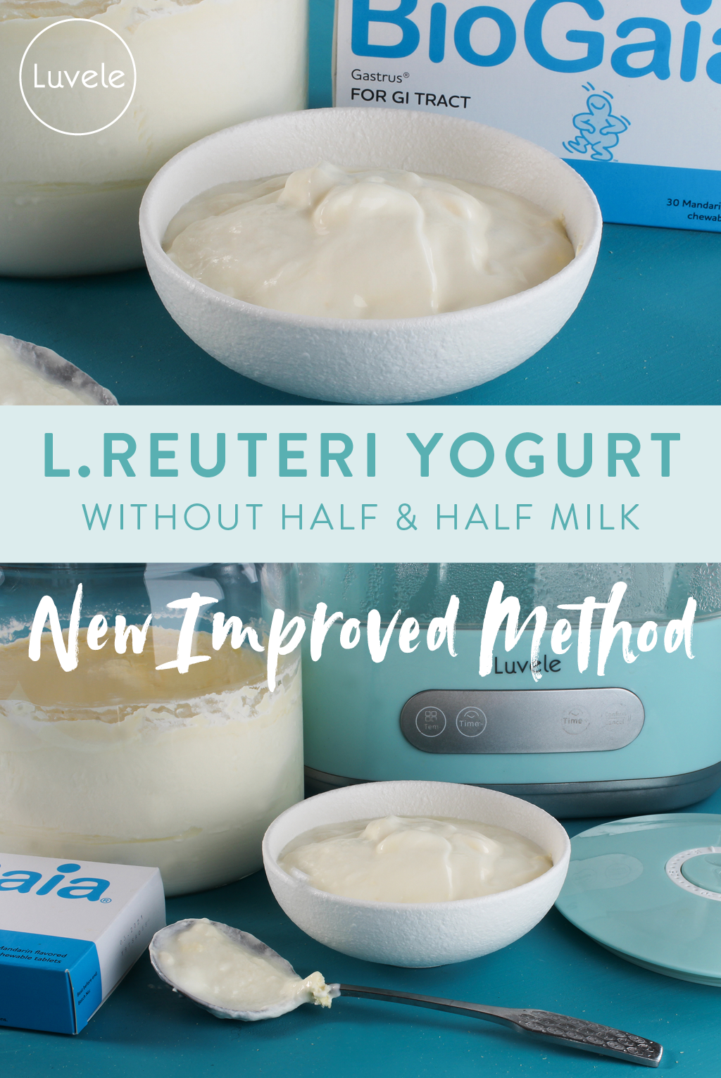 l.reuteri yogurt recipe
