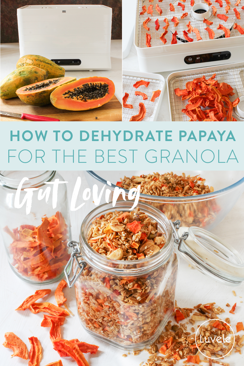 How to dehydrate papaya + papaya granola recipe