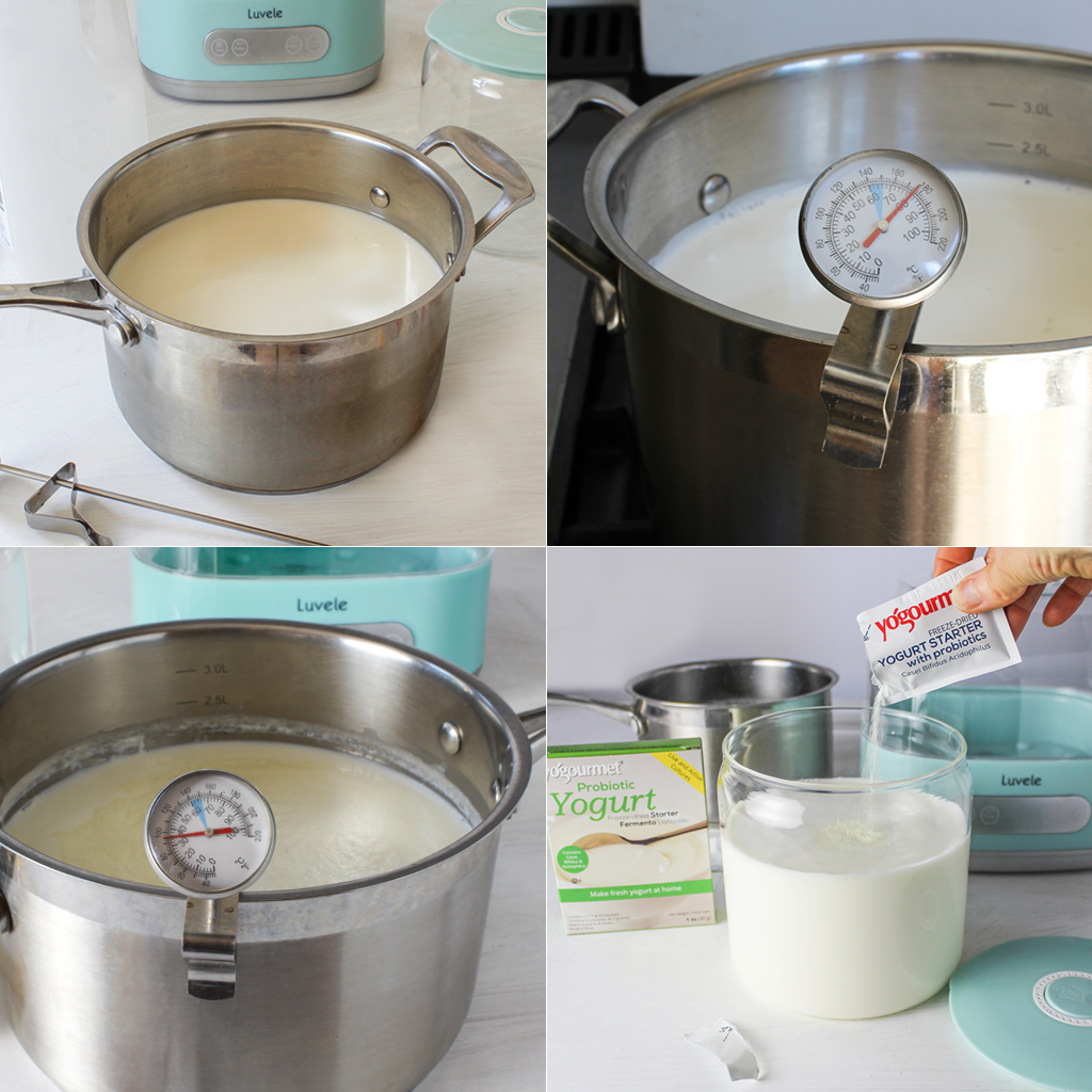 homemade probiotic yogurt step by step