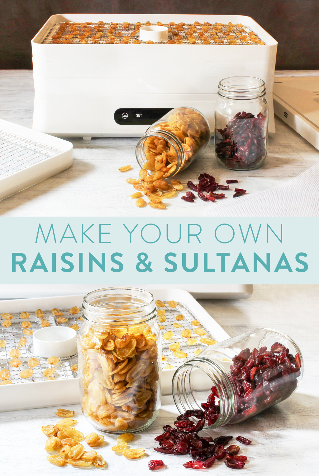 Making raisins in a food dehydrator