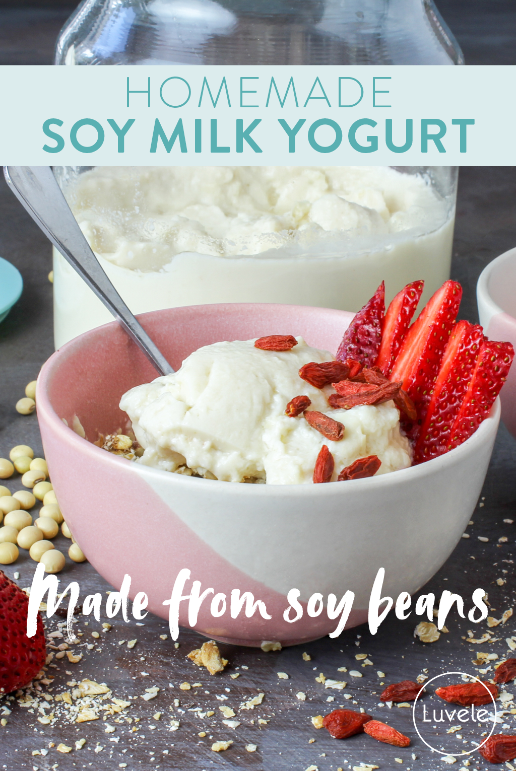 homemade soy milk yogurt