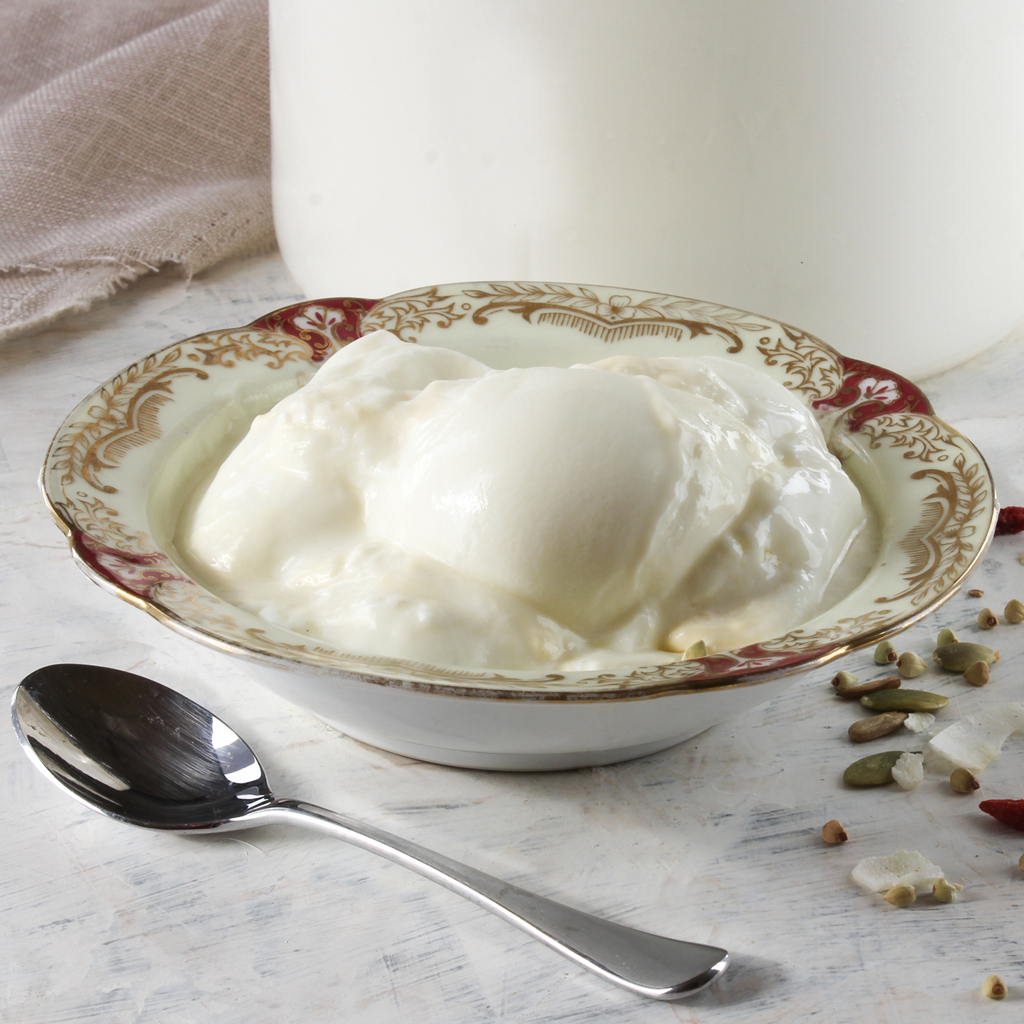thickest homemade yogurt