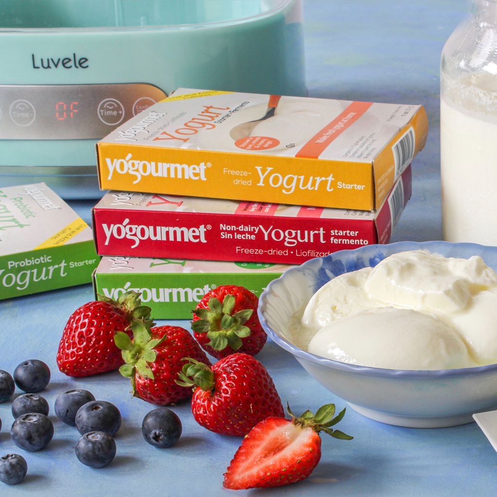 Everything You Need To Know About Yogurt Starter Culture Luvele Au