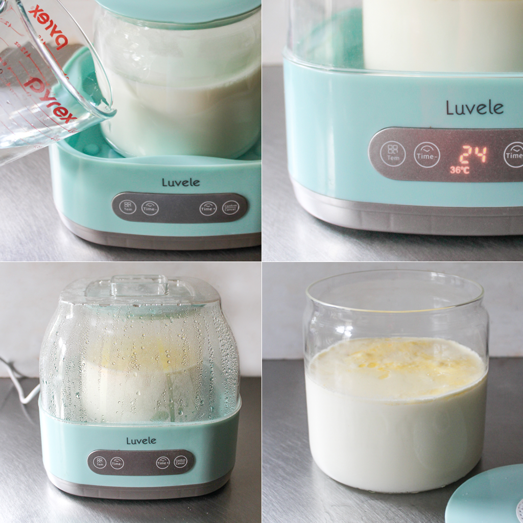 probiotic yogurt step by step
