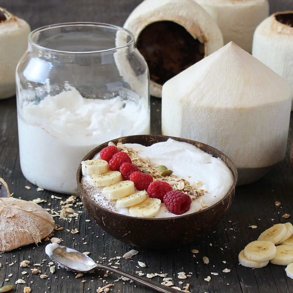 coconut yogurt made from fresh drinking coconuts