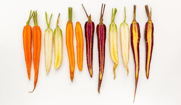 different colored carrots