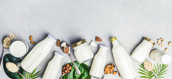 different types of Plant milks