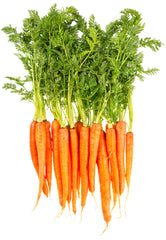 carrots are rich in Beta Carotene