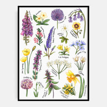 Load image into Gallery viewer, Welsh Wildflower Print