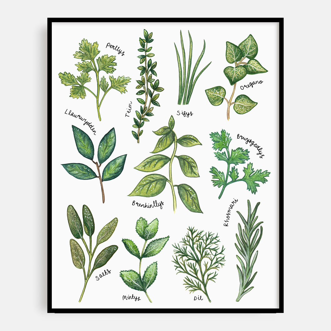 Welsh Language Herbs Print