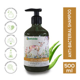 Anti Bacterial & Anti Itch Shampoo | Suitable for Dogs & Cats | Aloe Vera | Tea Tree Essential Oil | Sulphate Free | Paraben Free | 500 ml