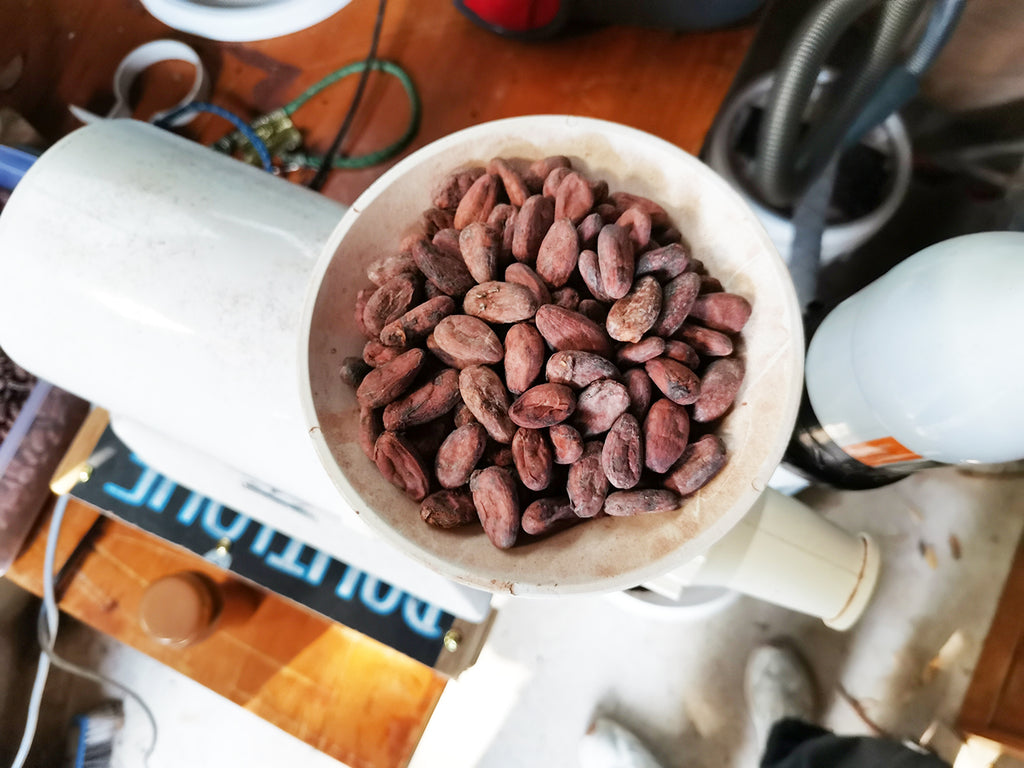bean-to-bar chocolate making new zealand