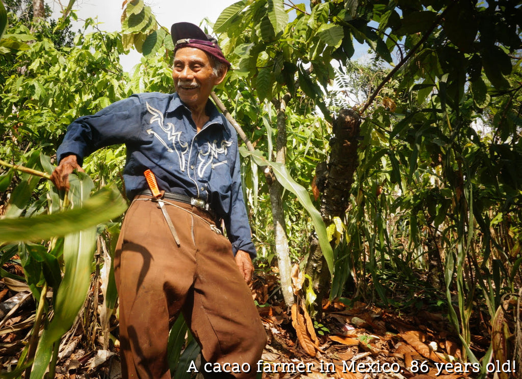 cacao farmer mexico