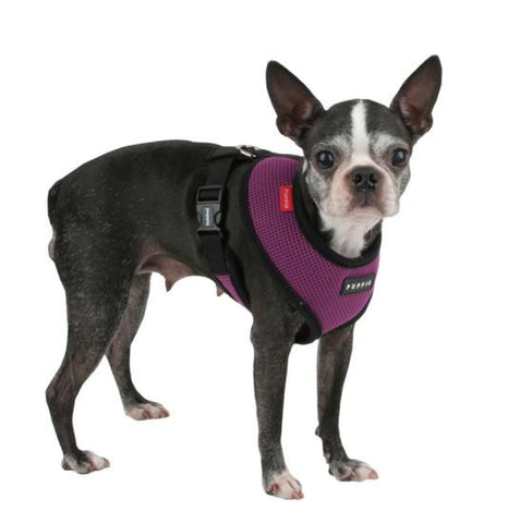 Puppia Harness and Lead Set - Snooty Paws - 1