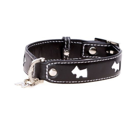 Haute Black Dog Collar - Snooty Paws - 1