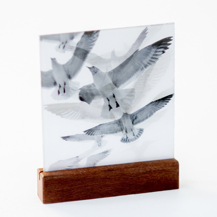 Birds : Mini on Wood Plinth