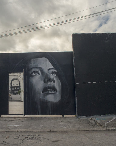Wynwood Wall with Rone Mural 3D