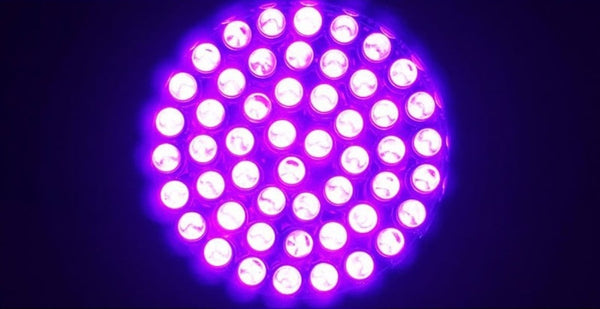 51 LED UV Flashlight - Electromann SA