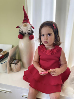 Girls Christmas dress / Red dress for little girl / Red Hood dress / Toddler Christmas dress / Holiday dresses / Family photo