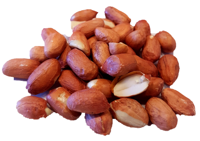 Peanuts Raw Organic Nuts