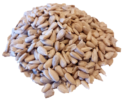 Sunflower Seed Organic