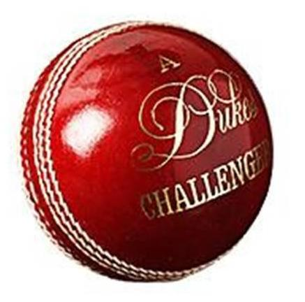 Dukes Challenger Cricket Ball