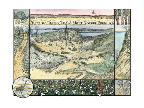 Glenn Wolff Original Artwork - Arcadia Dunes: The C.S. Mott Nature Preserve