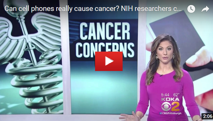 Can mobile phone cause cancer?