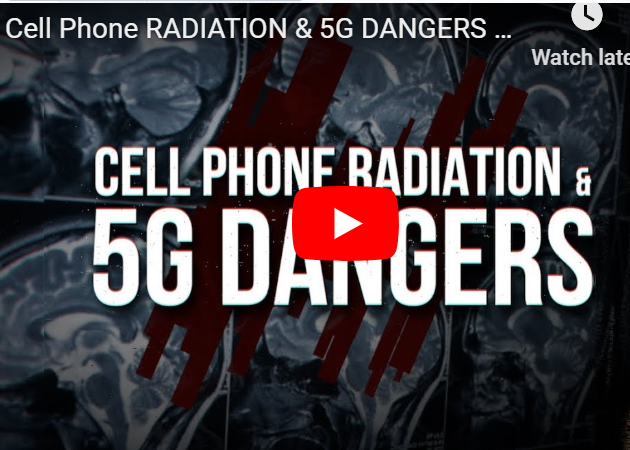 Cell Phone RADIATION & 5G DANGERS | An In-Depth Exploration