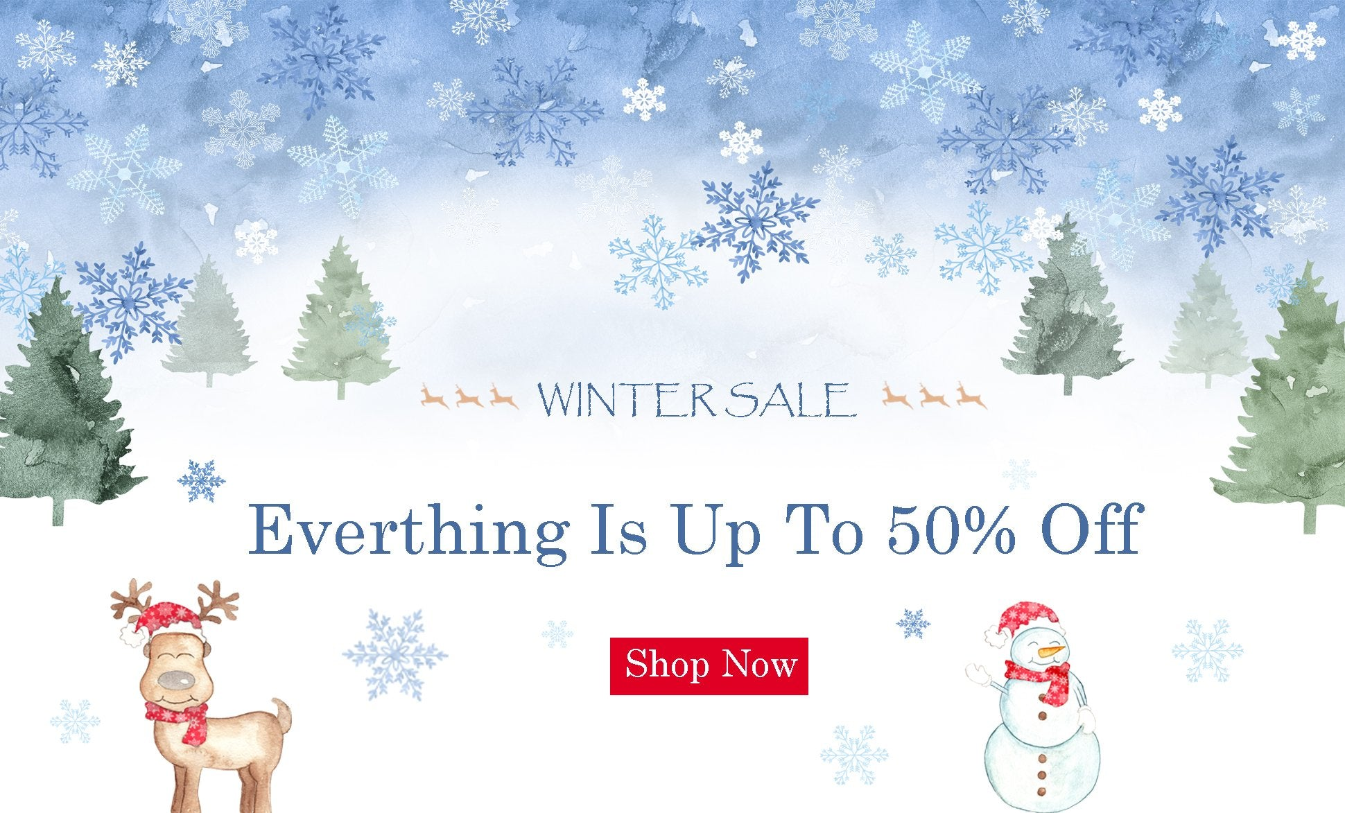 WINTER SALE: everything is up to 50% off
