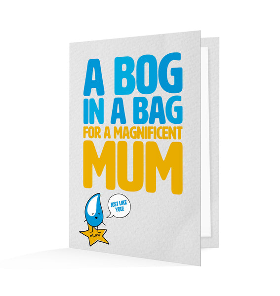 By gifting this card to a loved one, you're giving a bag of cement that will help build a hygienic and life-saving toilet for mums across the world.