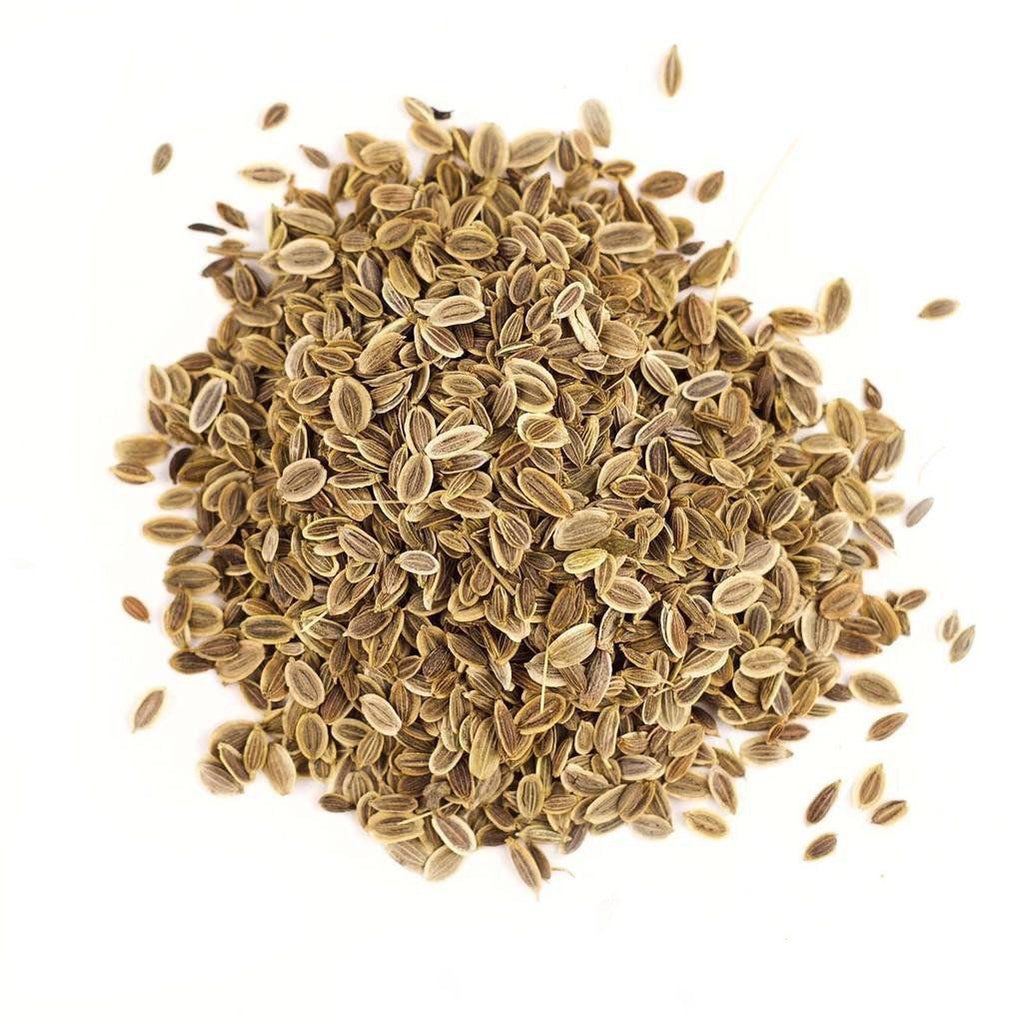 Dill Seed (Whole) - Gneiss Spice