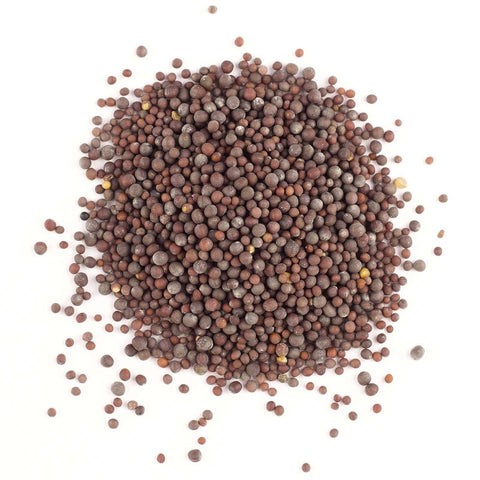 Mustard Seed Brown (Whole) - Gneiss Spice