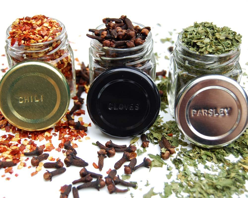 Your Choice of Organic Spices — 24 Large Magnetic Jars + Stainless Wall Plate - Gneiss Spice