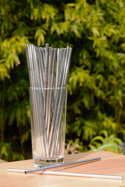 Steel Straw - Reuseable